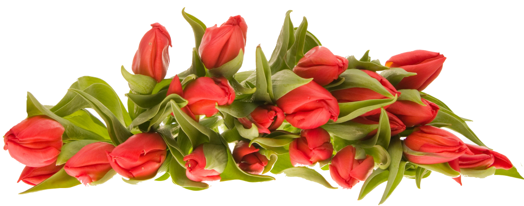 Bouquet-Of-Flowers-PNG-Image-85349